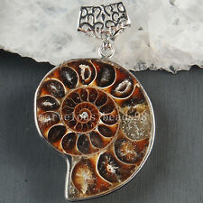 36x59 mm Fashion Natural Ammonite Fossil Pendant Bead MC3635