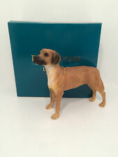 Dog Studies by Leonardo Rhodesian Ridgeback Figurine Ornament *BRAND NEW BOXED*