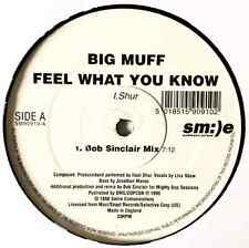 """BIG MUFF - Feel What You Know (12"""") (G+/NM)"""