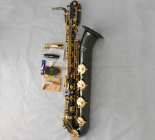 Professional Taishan Baritone saxophone Black Nickel Gold Eb Sax Low A With Case