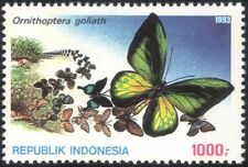 Indonesia 1993 Butterflies/Insects/Nature/Conservation/Butterfly 1v (n21942)