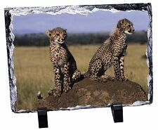 Cheetahs on Watch Photo Slate Christmas Gift Ornament, AT-25SL