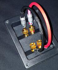 10 GAUGE MONSTERS Audiophile Speaker Cables Jumper Wires BI WIRE banana & fork