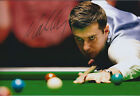 Mark SELBY SIGNED 12x8 Photo Autograph COA AFTAL Welsh Open Winner SNOOKER