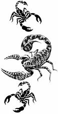 Scorpion Sex Temporary Fake Tattoos Waterpoof Passion Solitude Body Art Transfer