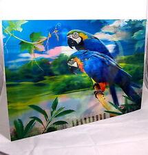 großes 3 D Effekt Bild 58 x 38cm Bilder Poster Wandbild Papagei Ara Paar Vogel D