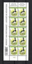 BELGIQUE - BELGIUM - BUZIN - OISEAUX / BIRDS (VANNEAU HUPPE)  - BLOC 10V**MNH