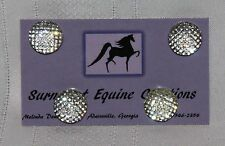 Horse Show Number Magnets - Large Clear Dotted - Saddleseat, Hunt Seat, Western