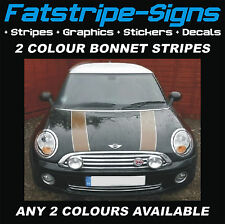 MINI BONNET STRIPES PIN STRIPES ANY 2 COLOURS CAR GRAPHICS STICKERS DECALS ONE