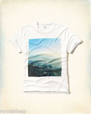 HOLLISTER By Abercrombie Photoreal Graphic T-Shirt Large *Brand New w/ Tags* Tee