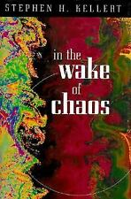 In the Wake of Chaos: Unpredictable Order in Dynamical Systems (Science and Its