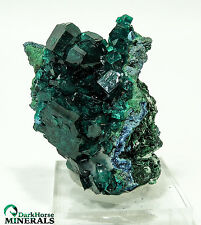 DIOPTASE AND MALACHITE AND SHATTUCKITE -  TANTARA MINE, CONGO O-92