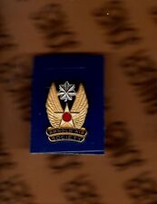 USAF AIR FORCE Arnold Air Society LTC 1 inch crest badge