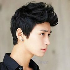 Men Korean Handsome Vogue Black Short Hair Cosplay Party Hair Wig Full Wigs