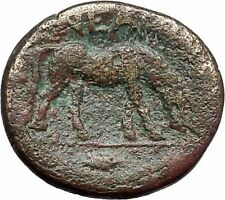Neandreia in Troas 350BC Apollo Horse Authentic Ancient Greek Coin i49186