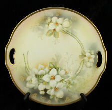 Antique ES Germany Prov Saxe Erdmann Schlegelmilch Hand Painted Cake Plate