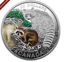 2016 1 oz. Fine Silver Coloured Coin– Baby Animals: Baby Raccoon–Mintage: 5,500