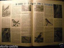 SPORT_CACCIA_TIRO AL PIATTELLO_PESCA_BERGAMO_IMPONENTE RACCOLTA_ILLUSTRATA_1938