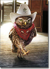 Cowboy Owl Funny Birthday Card - Greeting Card by Avanti Press