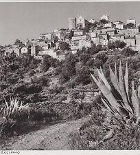 1952  --  HAUTE CORSE   ROGLIANO   3F502
