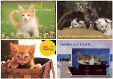 NICE set lot 4 pcs Pussy CAT Kitten PC post card used feline Funny LOVELY