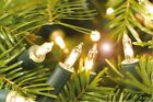 Christmas Fairy Lights Clear Tree Window House Decoration Warm White Xmas Light