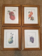 B. Hutcheson Signed and Numbered Fruit Prints Custome Gold Frames Gently Used