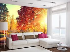 Fall. Autumn Park Mural Photo Wallpaper Decor Paper Wall Background 3D
