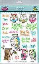 OWLS & SENTIMENTS, BRANCHES & LEAVES - JUSTRITE A5 CLEAR STAMP COLLECTION