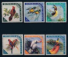[38942] Maluku Selatan  Birds Vögel Oiseaux Ucelli   MLH