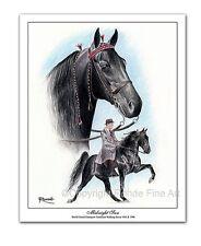 TENNESSEE WALKER walking HORSE ART - MIDNIGHT SUN - famous stallion in action
