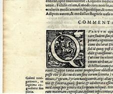Stampa antica CAPOLETTERA Q del 1570 cavaliere con armatura Old antique print