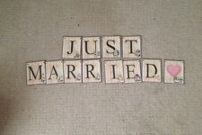 Just Married Alice In Wonderland Wedding Card  Bunting/banner decoration