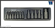 Welzh RIBATTINI Impact-Torx Plus Set Presa 12pc 8ip-60ip Qualità Professionale
