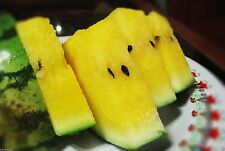 Watermelon seeds --Crimson Sweet-- non-GMO Heirloom 10 Seeds (Yellow)