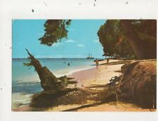 Beach Scene St James Coast Barbados 1976 Postcard 783a