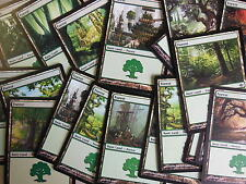 XXX 20 BASIC FOREST / WALD englisch magic the gathering deck mana forests XXX