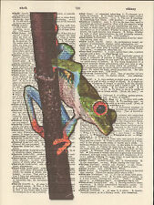 Red Toe Tree Frog Altered Art Print Upcycled Vintage Dictionary Page Mixed Media