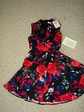 BOSTON PROPER GYPSY ROSE FIT AND FLAIR KNEE LENGTH FULL SKIRT DRESS 2 NWT