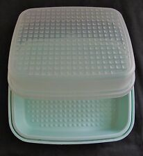 Tupperware 1295-7 Mint Green with Clear Lid Marinade Season Serve Meat Keeper