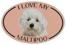 Oval Dog Breed Picture Car Magnet - I Love My Maltipoo - Magnetic Bumper Sticker