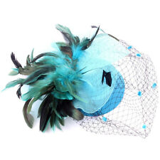 Fascinator Hair Clip Felt Purple Feather Mesh Pillbox Hat Net Lady Cap Accessory