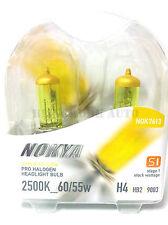 NOKYA USA H4 2500K Yellow Halogen Bulb for Holden Commodore VL VN VP VR VS VT