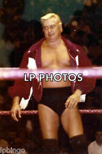 4x6  PRO WRESTLING PHOTO  PAT PATTERSON  PP2001     wwe  tna