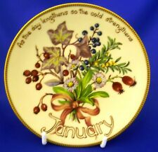 DAVENPORT/BRADEX COUNTRY DIARY OF AN EDWARDIAN LADY COLLECTOR PLATE - JANUARY