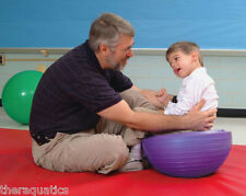 Abilitations Turt-L-Shell Balance SPECIAL NEED Vestibular Therapy STABLE CORE