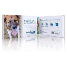 Mars Veterinary Wisdom Panel 3.0 Canine DNA Test - DNA-3.0 is as easy as 1, 2, 3