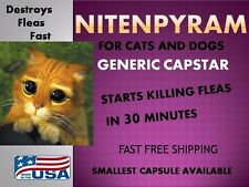 50 Capsules Flea Killer Control Nitenpyram (generic Capstar) 12mg for Cats