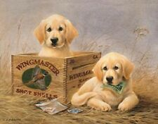 Yellow Lab Wingmaster Shot Shells Ammo Vintage TIN SIGN Metal Hunting Poster