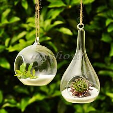 Glass Flower Plant Stand / Hanging Vase Terrarium Container Home Wedding Decor
